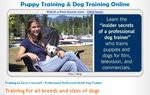 Dove Cresswell's Dog Training Online