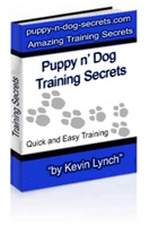 Puppy n' Dog Training Secrets